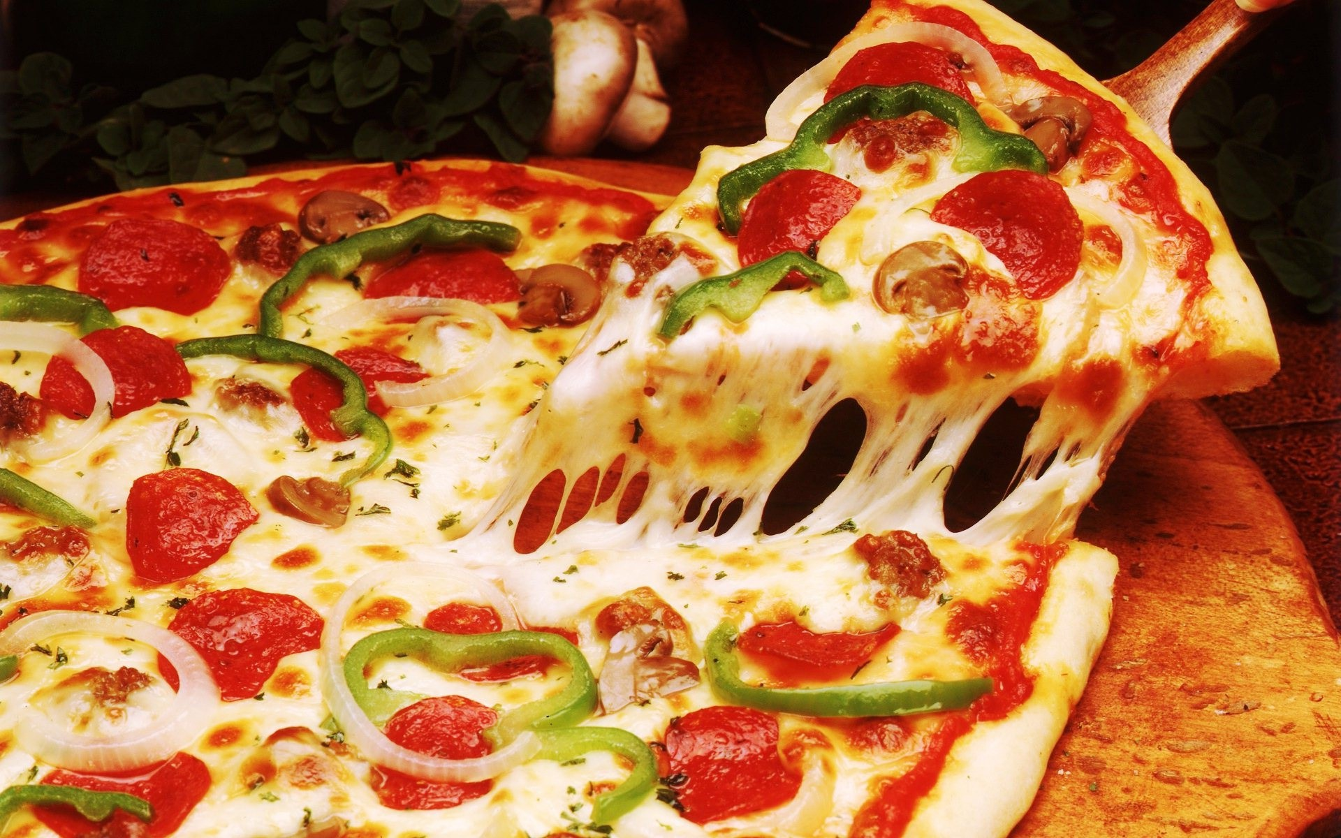 Где заказать качественную пиццу?
